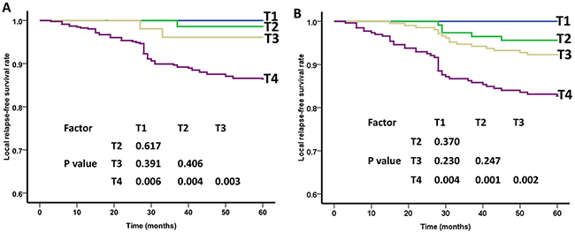 Local relapse-free survival (LRFS) curves of nasopharyngeal carcinoma patients for different T categories.
