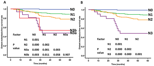 Distant metastasis-free survival(DMFS) curves of nasopharyngeal carcinoma patients for different N categories.