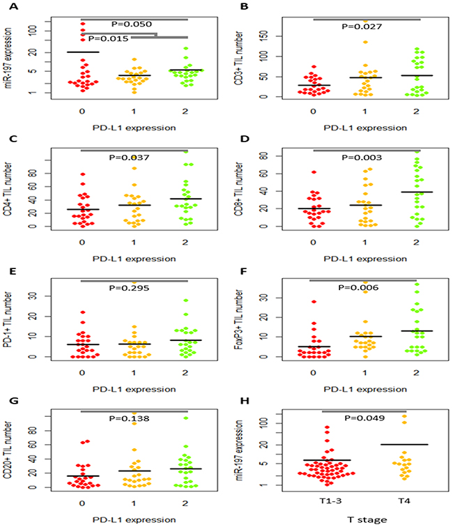 Dot plots of relative miR-197 expression level and tumor-infiltrating lymphocytes (TILs) according to PD-L1 expression and T stages.