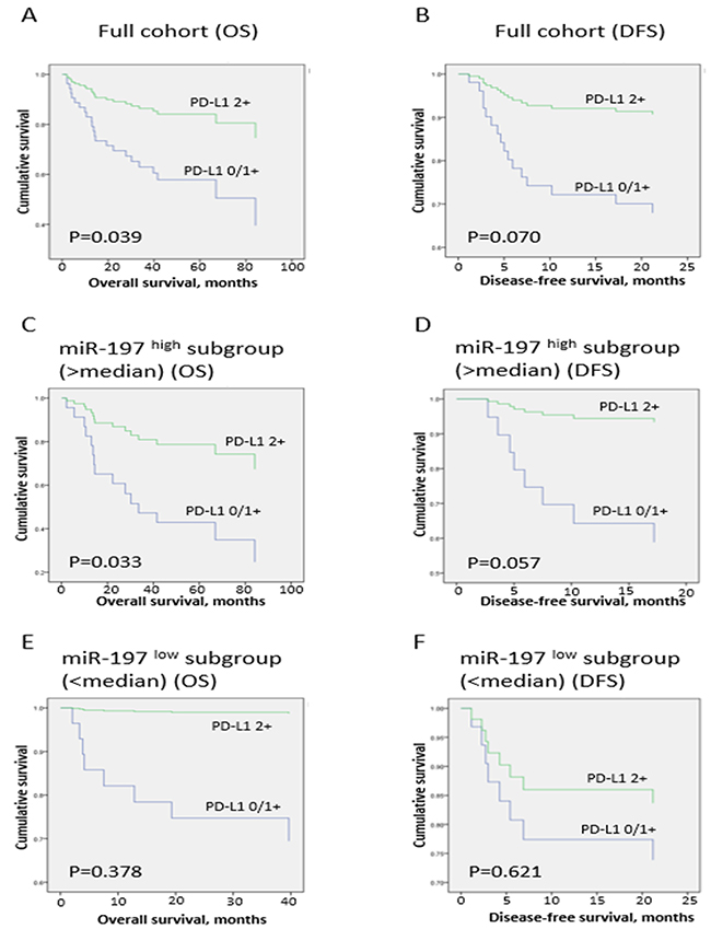 Survival analysis in full cohort and miR-197high and miR-197low subgroups.