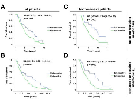 Tumor aggressiveness in mCRPC patients based on Eg5 expression.