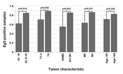 Correlation between PCa characteristics and nuclear Eg5 expression in PCa patients.