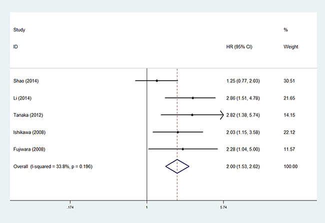 The correlation between MUC1 expression and progression-free survival in NSCLC patients.