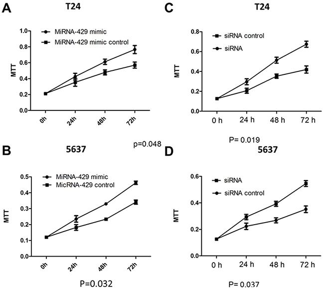 Cell proliferation changes caused by transfection of CDKN2B siRNA and hsa-miR-429 mimic Cell proliferation was measured by MTT assay.
