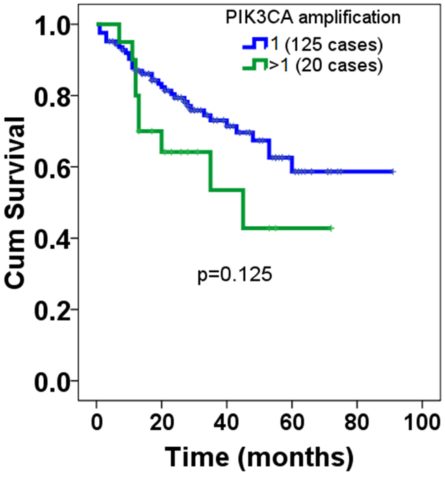 Overall prognosis of PIK3CA amplification in patients with DLBCL.