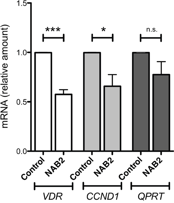 Effects of NAB2 overexpression in K562 cells on expression of the WT1-target genes VDR, CCND1 and QPRT.