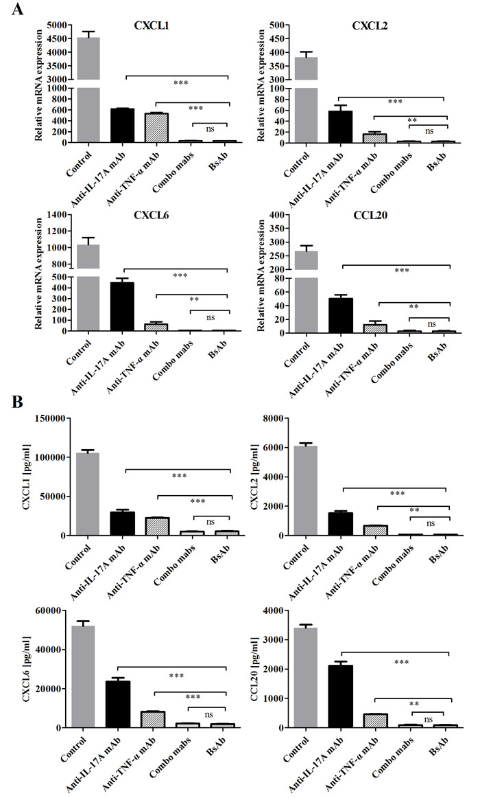 Inhibition of bsAb on the production of neutrophil and Th17 chemokines on FLS.