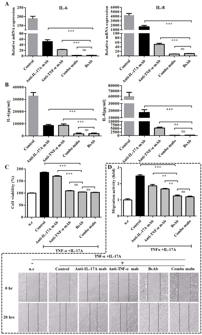 Inhibition of bsAb on the production of IL-6 and IL- 8 and proliferation, and migration of FLS.
