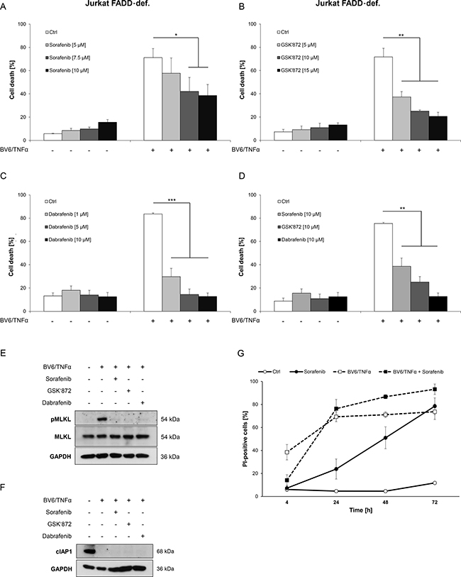 Sorafenib protects ALL cells from BV6/TNFα-induced necroptosis.