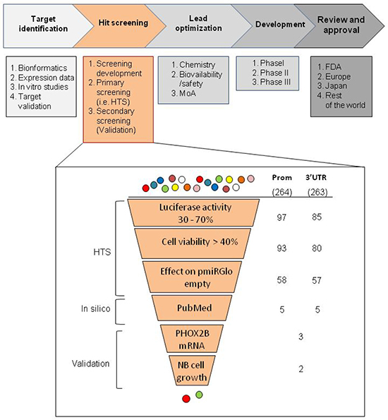 Workflow of the selection criteria applied in the high throughput drug screenings.