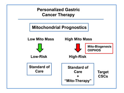 Gastric cancer: Mitochondrial-based diagnostics for personalized therapy.