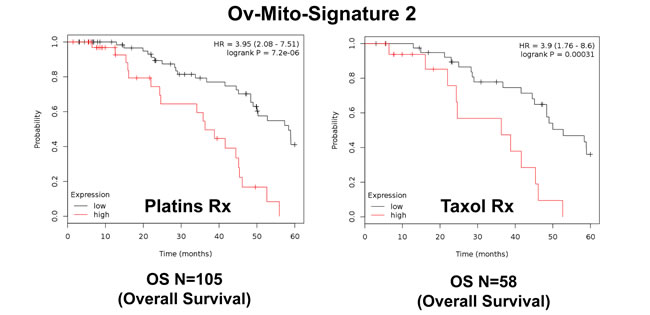 Ov-Mito-Signature 2 predicts the response to therapy in ovarian cancer patients.