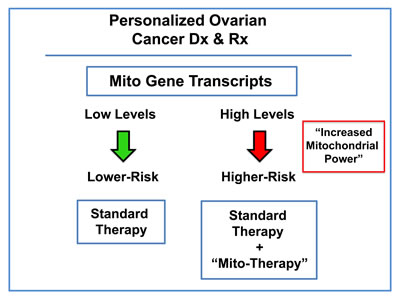 Ovarian cancer: mitochondrial-based companion diagnostics for personalized cancer therapy.
