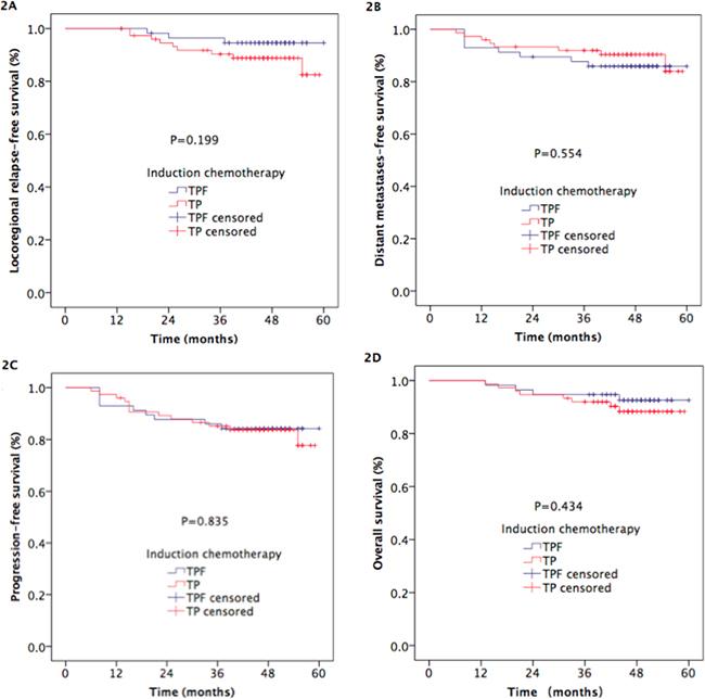 Kaplan-Meier estimates of survival outcomes in TPF and TP arm NPC patients.