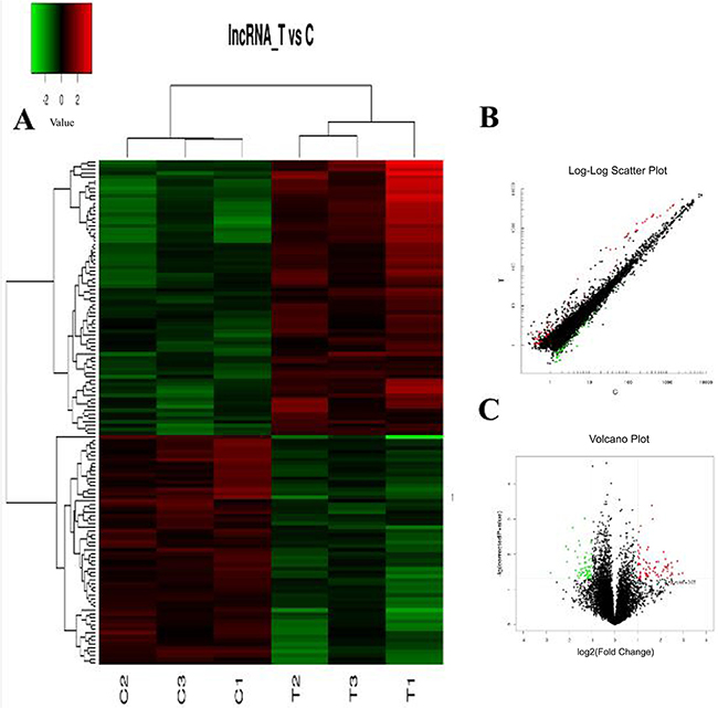 The expression profile of lncRNAs in RA patients compared with healthy controls.