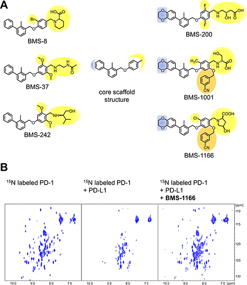 Structures and the PD-1/PD-L1 blocking potential of BMS compounds.