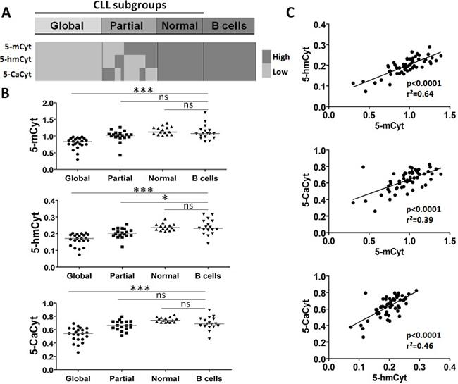 Analysis of cytosine (5-Cyt) derivatives in chronic lymphocytic leukemia (CLL) B cells defines distinct subgroups.