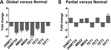 Distinct epigenetic regulator profiles according to the 3 cytosine derivative subgroups.