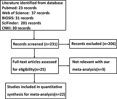 Flow diagram of the selection process in this meta-analysis.