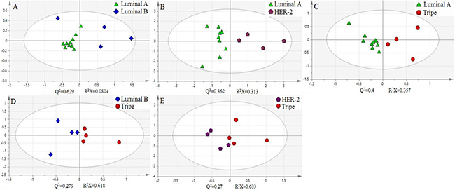 Principal component analysis (PCA) of four oxidation products of cytosine in Molecular subtyping of human breast cancer.