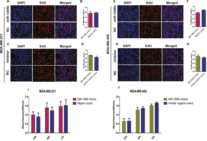 MiR-1268b had no effect on the proliferation ability of breast cancer cells.