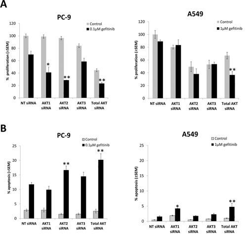 The effect of selective inhibition of AKT isoforms with siRNA on the gefitinib response of NSCLC cells.