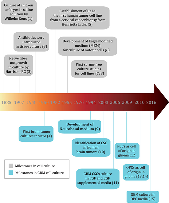 Timeline of important milestones in cell culture and GBM cell culture (reference numbers for milestones can be found in Supplementary File 1).