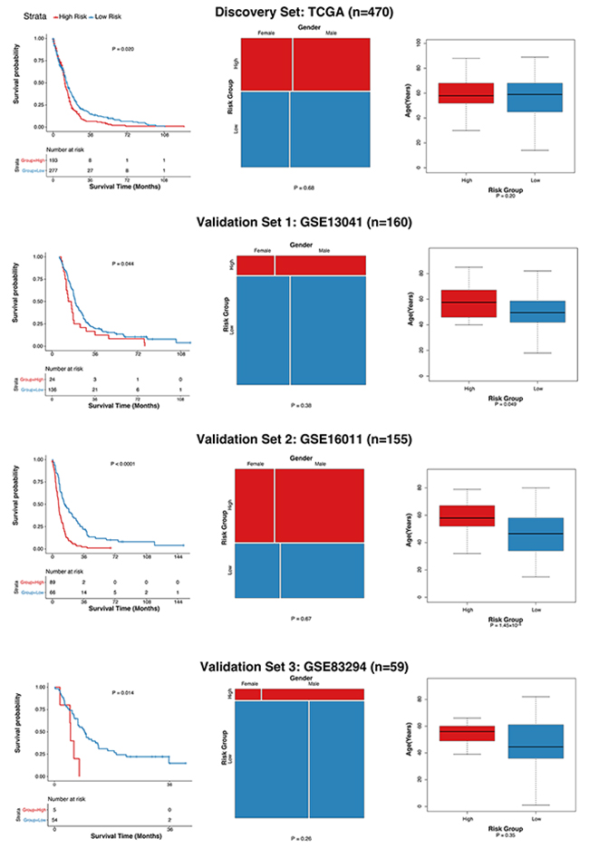 Evaluation of the association of GLO10 score with glioblastoma survival.