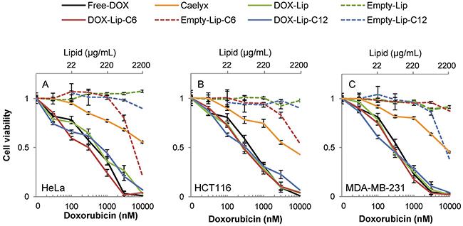 Dose-dependent effect of liposomal doxorubicin on cell viability.