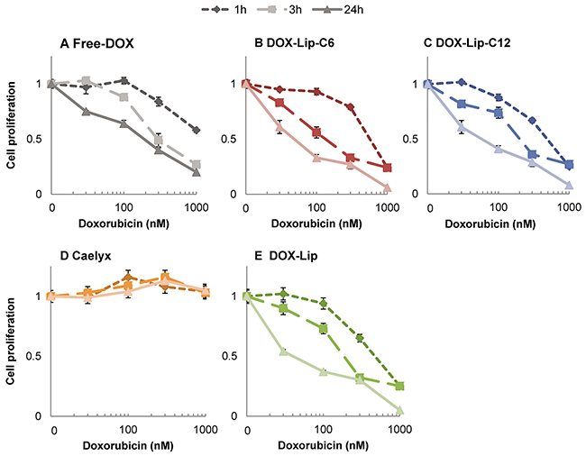 Influence of ceramide in liposomes on kinetics of DOX effect on cell proliferation.