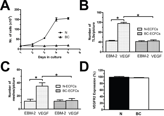 VEGF does not stimulate proliferation in breast cancer-derived endothelial colony forming cells.