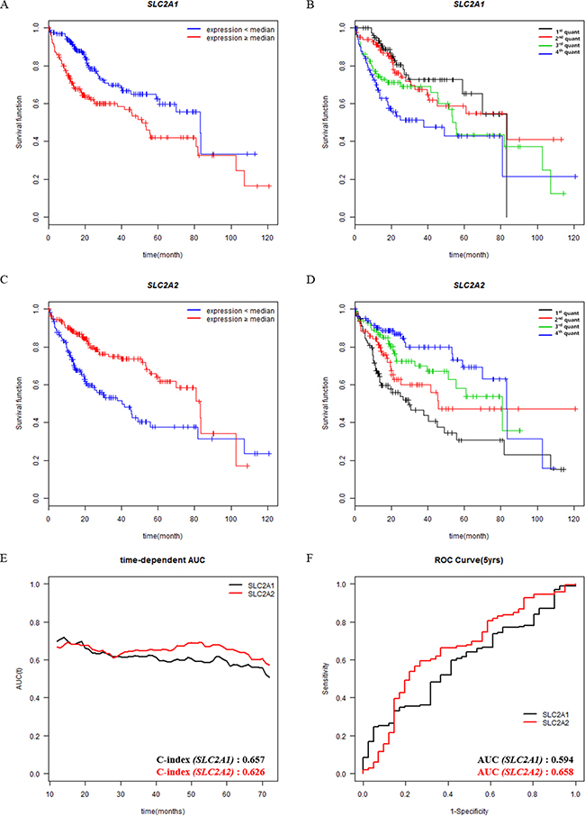 Survival analysis according to the expression levels of prognostic genes in patients with HCC.