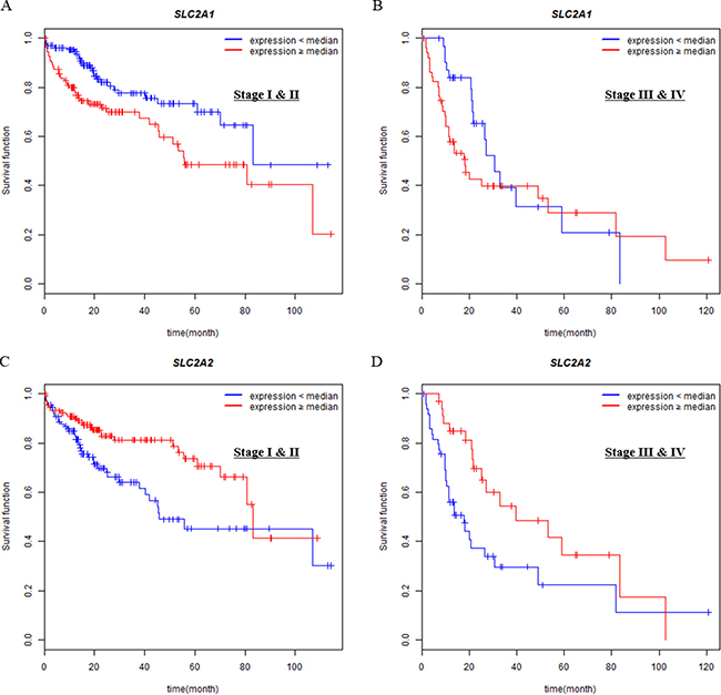 Associations of SLC2A1 or SLC2A2 expressions with overall survival in different tumor stages (I & II vs III & IV).