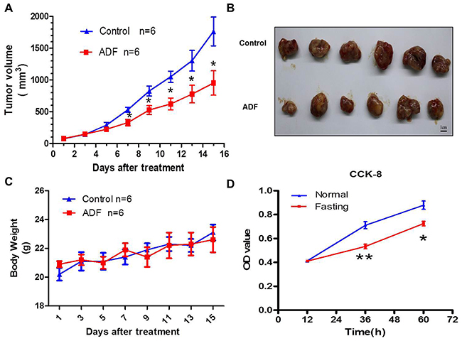 Fasting inhibits tumor growth both in vivo and in vitro.