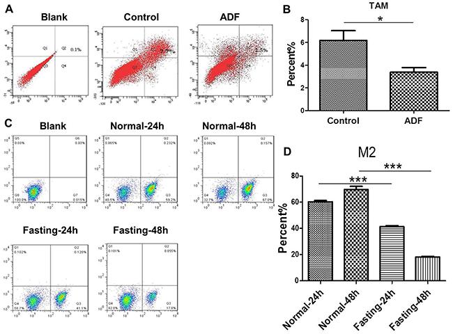 Fasting suppresses M2 polarization of TAMs both in vivo and in vitro.