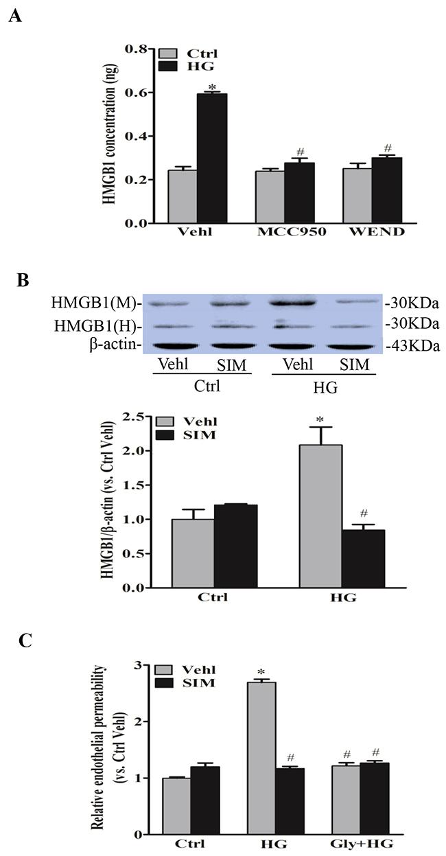 Simvastatin inhibited NLRP3 inflammasome-dependent HMGB1 release.
