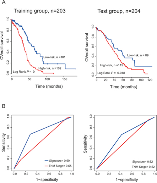 The PCGs-lncRNAs-microRNAs signature predicts overall survival of patients with OC and comparison the survival prediction power of the PCGs-lncRNAs-microRNAs signature and TNM stage.