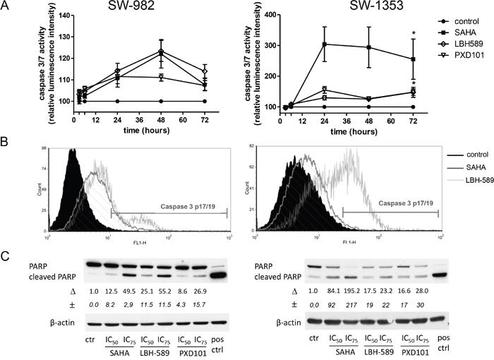 HDACi induce apoptosis in sarcoma cells.