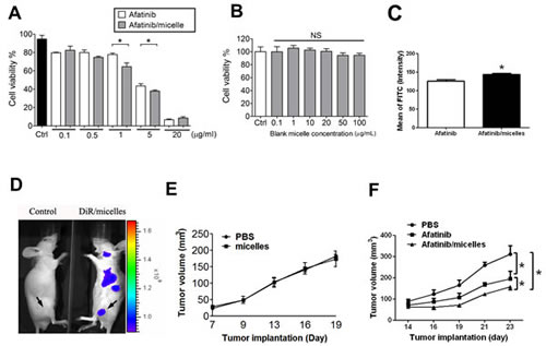 Afatinib/micelles increase the therapeutic efficacy of afatinib on CRC models.