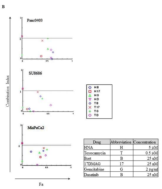 Combination index plot of HNA and toyocamycin with four different drugs (bortezomib, 17-DMAG, gemcitabine, dasatinib).