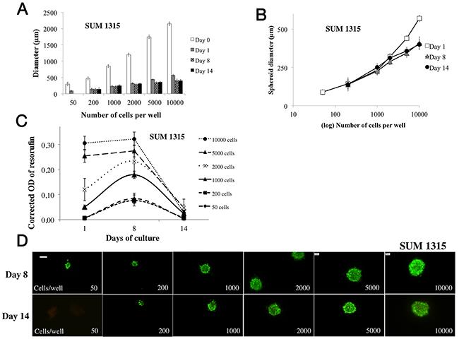 Parameter determination for SUM1315 cell line spheroid formation.