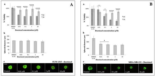 2D vs 3D cell culture sensitivity to docetaxel.