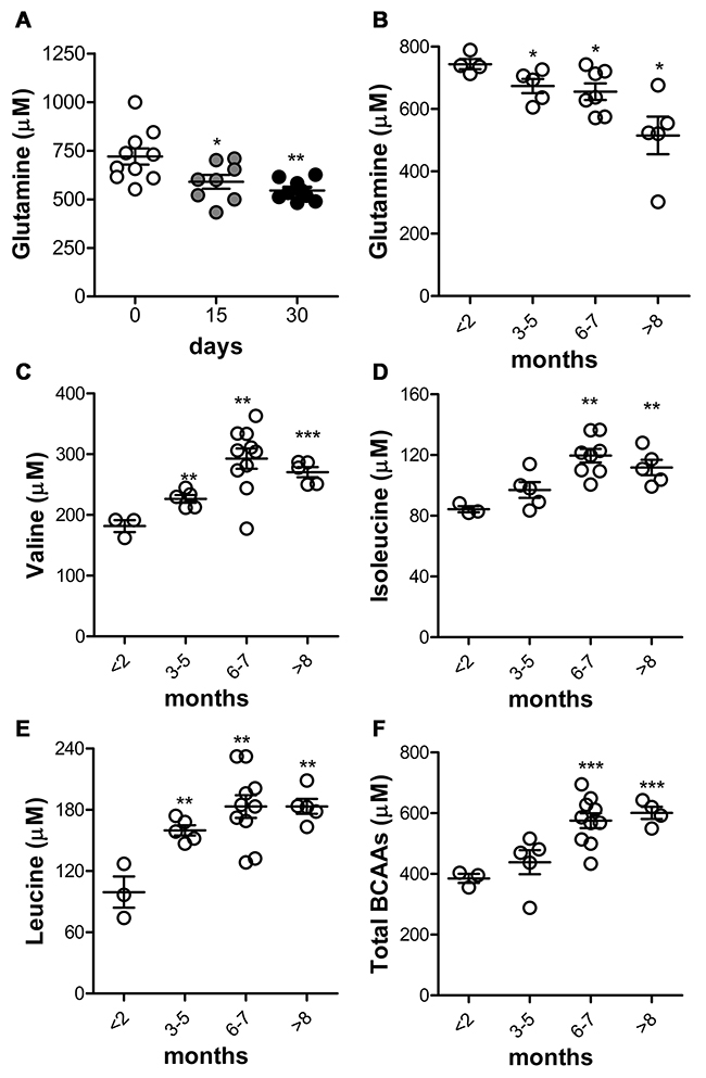 Glutamine decrease and BCAAs increase are linked to PDAC progression in KC mice.