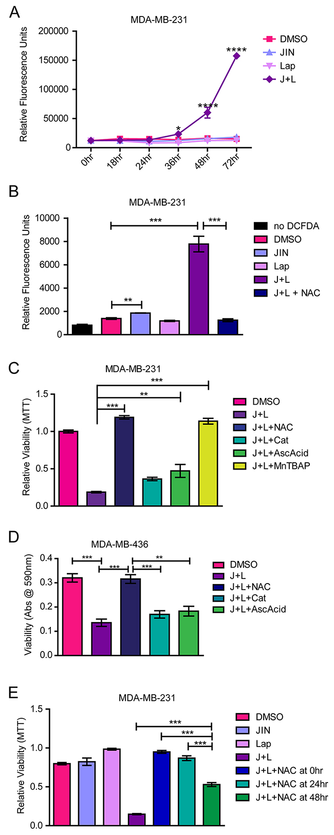 JNK-IN-8 and Lapatinib Cause Cell Death by Increasing Reactive Oxygen Species.