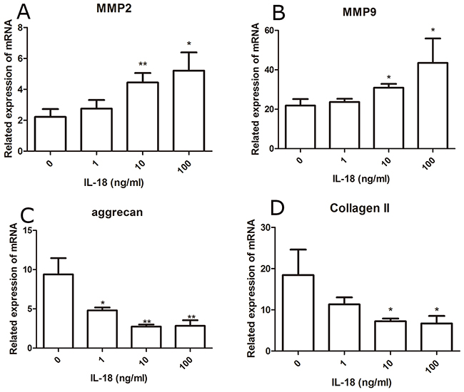 Up-regulation of matix-degrading enzyme genes and down-regulation of chondrocyte-specific genes at mRNA level caused by IL-18 were observed in SD rat chondrocytes.