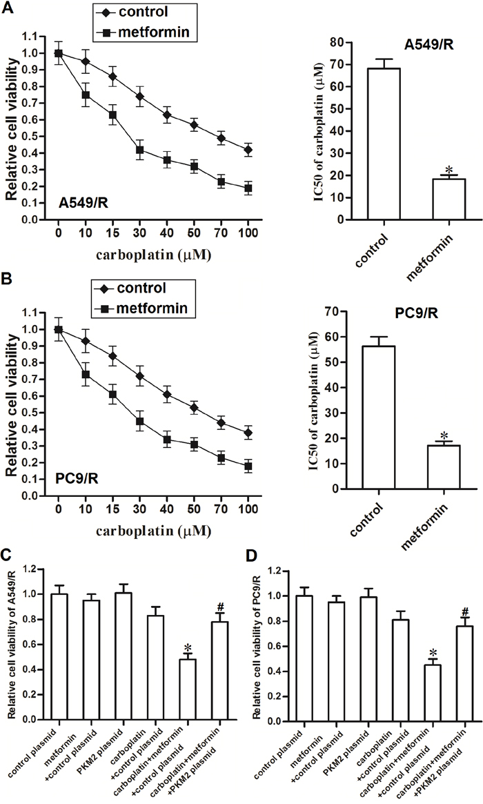 Metformin sensitizes A549/R and PC9/R cells to carboplatin by decreasing the expression of PKM2.