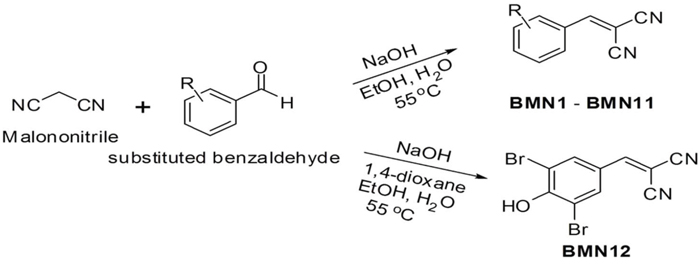 Rationale for the design of 2-(substituted benzylidene)malononitrile analogs.