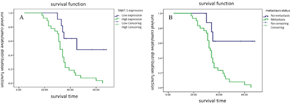 Survival cumulative distribution function of SNAT1 in patients with osteosarcoma.