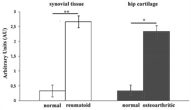 Semiquantitative evaluation of KIF3A immunostaining.