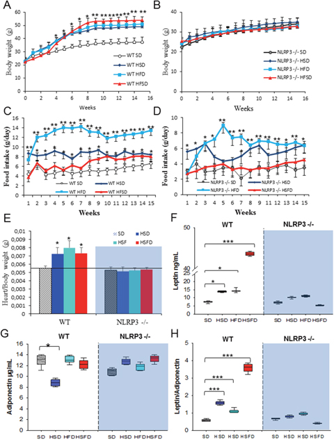 Nlrp3 signaling suppression prevents obesity induced effects of the HSD, HFD and HSFD diets.